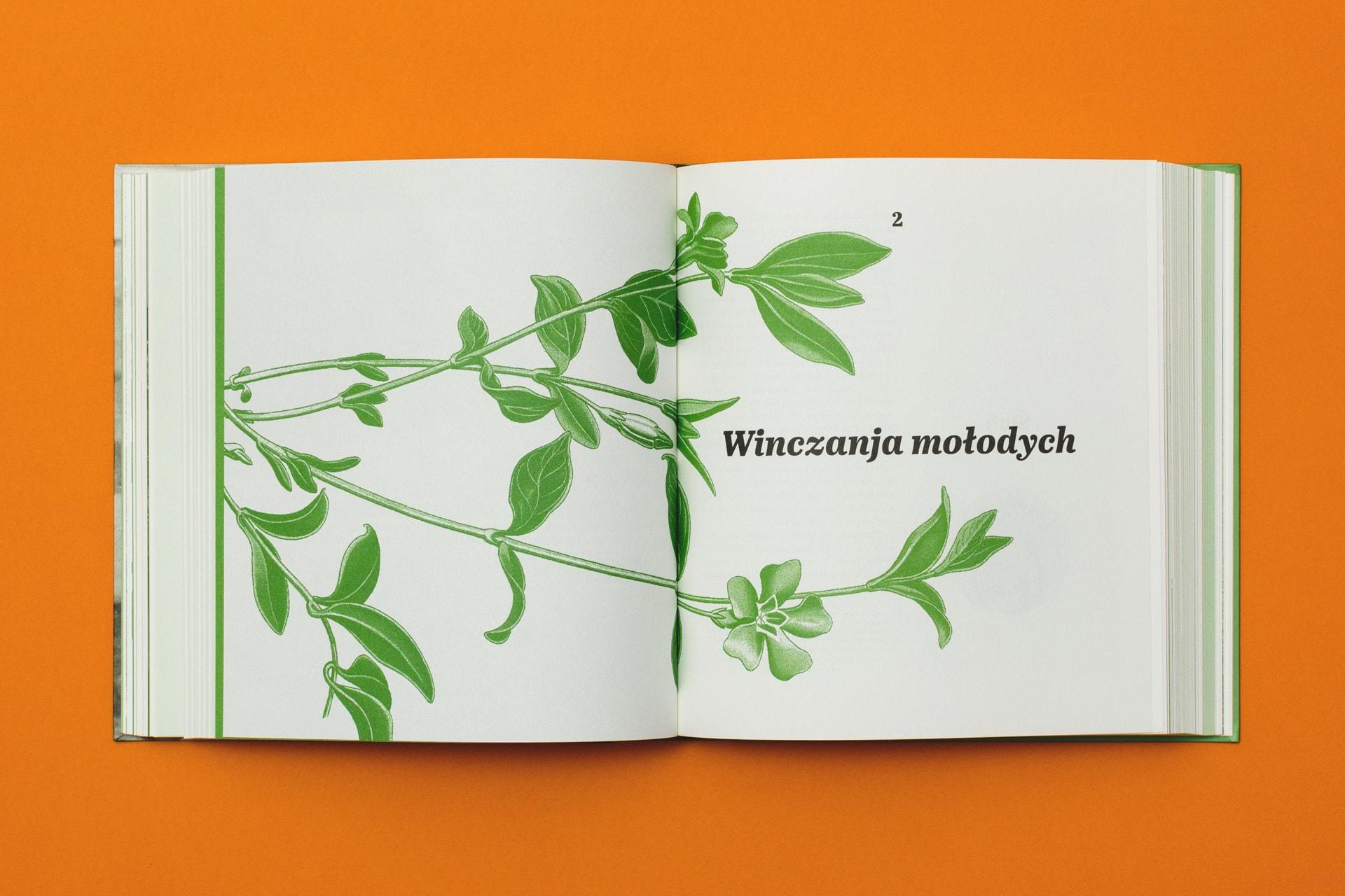 www.www.zyznowski.pl - Łemkowskie Wesele wŚwiątkowej Wielkiej - wnętrze_1zyznowski.pl - Łemkowskie Wesele wŚwiątkowej Wielkiej - wnętrze_1
